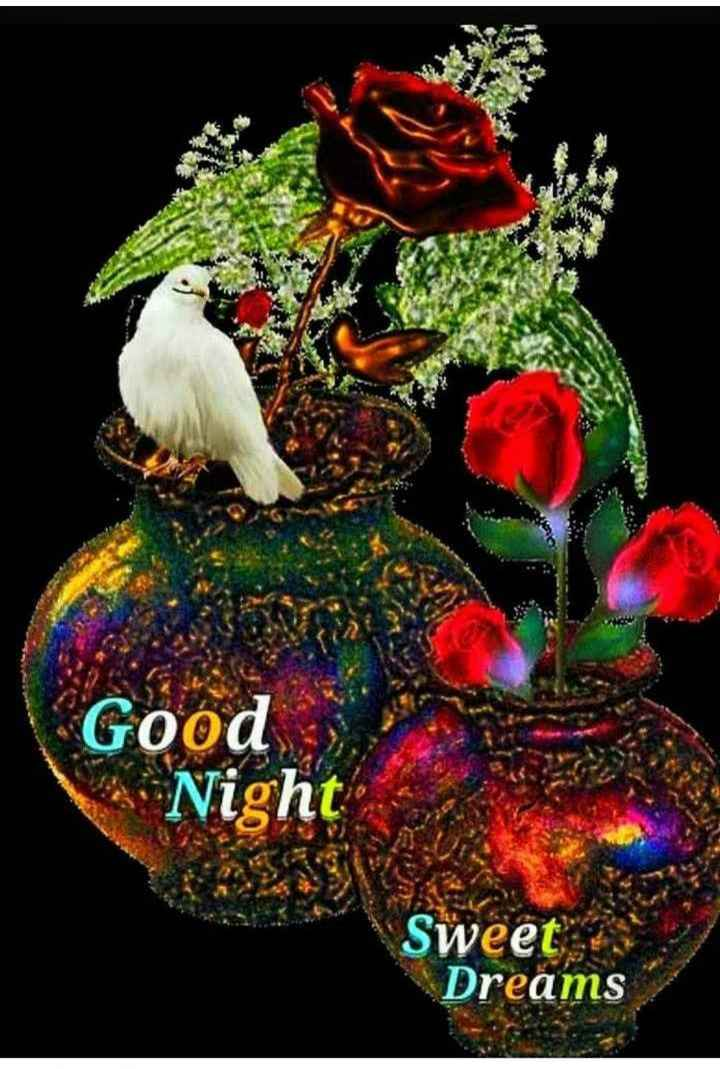 😚😚good night 😚😚 - Good Night Sweet Dreams - ShareChat