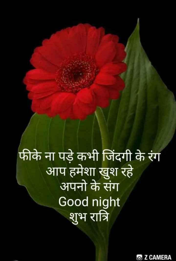 🌹🌹good night 🌹🌹 - फीके ना पड़े कभी जिंदगी के रंग आप हमेशा खुश रहे अपनो के संग Good night शुभ रात्रि O Z CAMERA - ShareChat