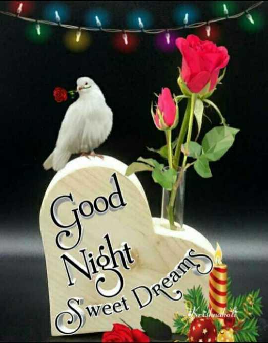 💕 goodnight💕 - Good Nicht Swo Peet Dreams - ShareChat