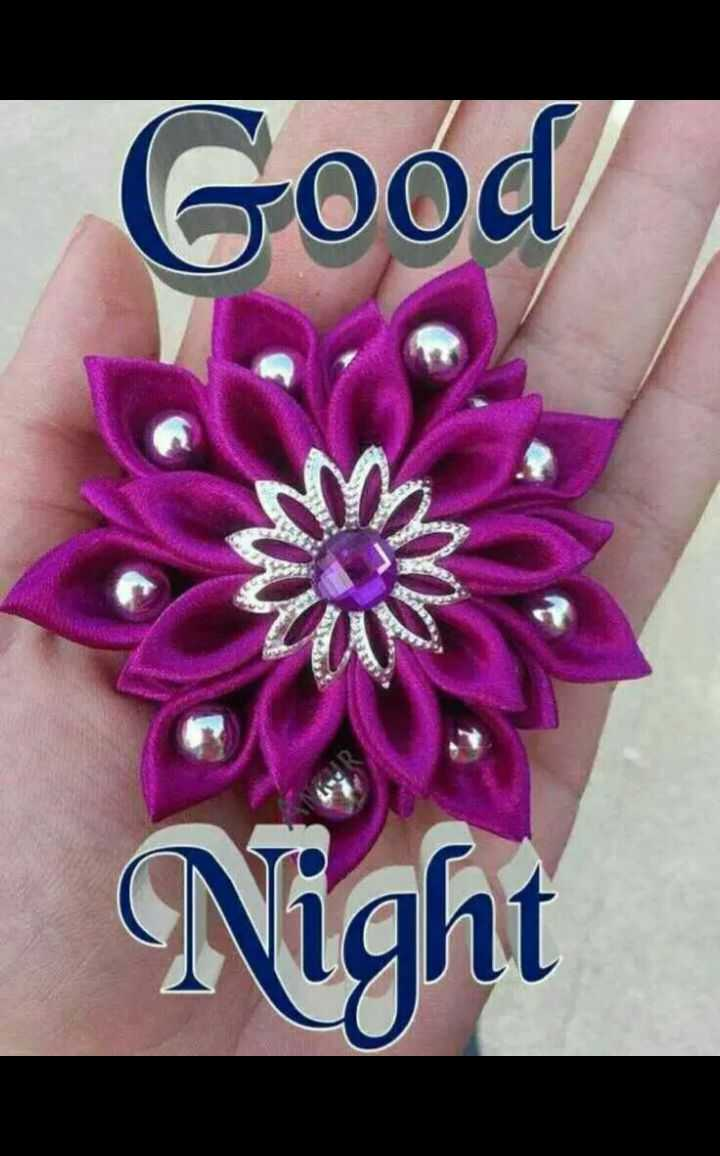 🌙good night🌙 - Good Night - ShareChat