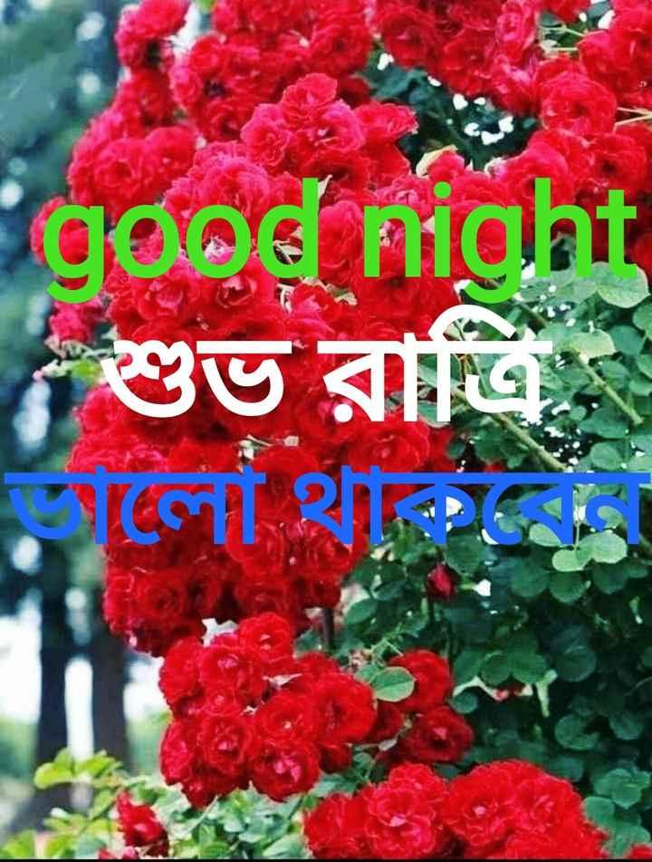 🍬good night 🍬 - good night শুভ রাত্রি চলো থাকি । - ShareChat