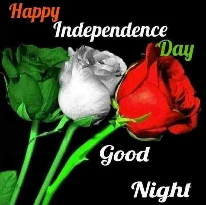 good night🌹🌹🌹 - Happy Independence Day Good Night - ShareChat