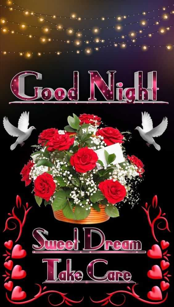 😴good night😴 - Good Night ream Sweet Dream Se Take Care - ShareChat