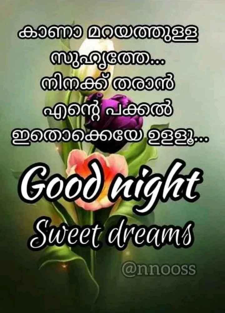 good night - കാണാ മറയത്തുള്ള സുഹൃത്താ നിനക്ക് തരാൻ എന്റെ പക്കൽ ഇതൊക്കെയേ ഉളളൂ Good night Sweet dreams @ nnooss - ShareChat