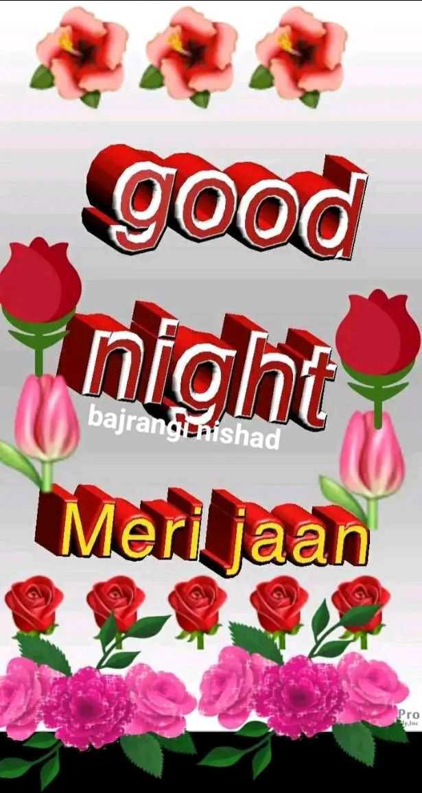 🌙good night🌙 - good night Meri jaan bajrangi nishad Pro - ShareChat