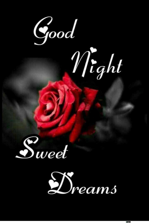 good night 😘😘 - Good Night Sweet Dreams - ShareChat