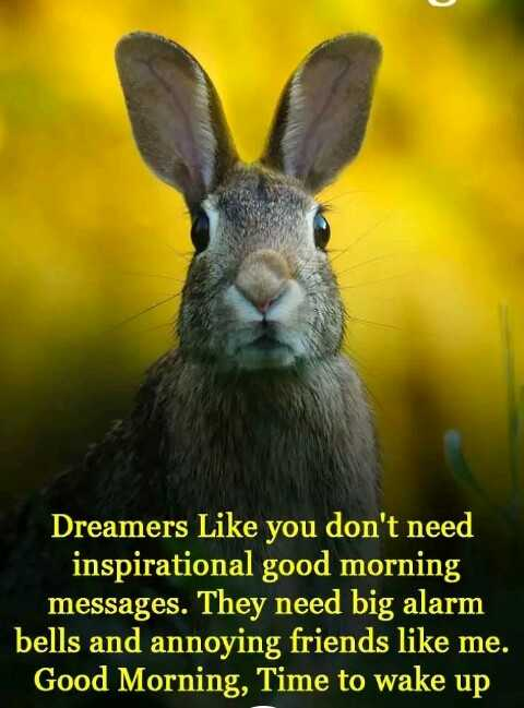 good night 🌃 - Dreamers Like you don ' t need inspirational good morning messages . They need big alarm bells and annoying friends like me . Good Morning , Time to wake up - ShareChat