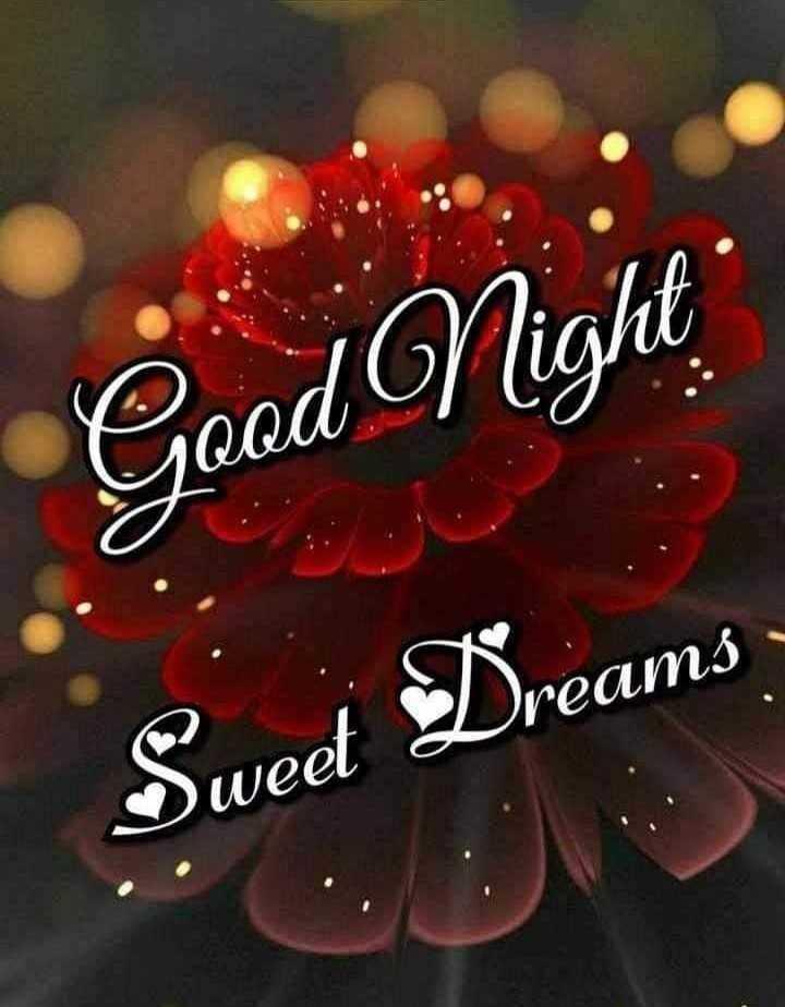 good night 😴 - Good Night Sweet Dreams - ShareChat