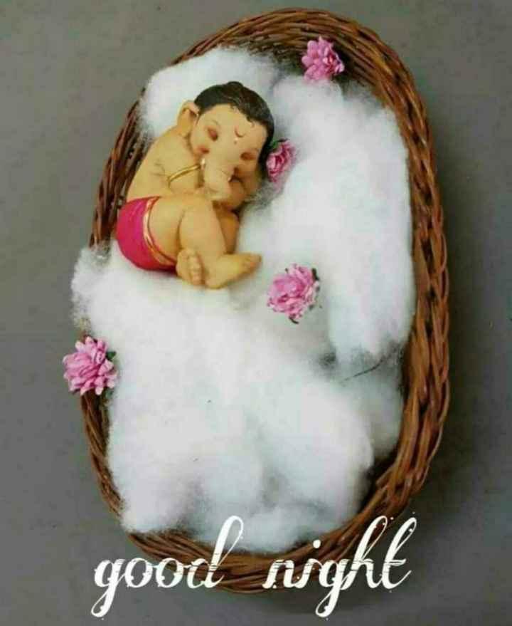 good night😴 - good night - ShareChat