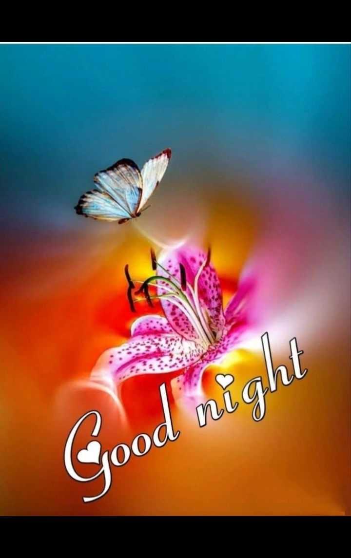 💞💑good night 💑💞 - ООО / - ShareChat