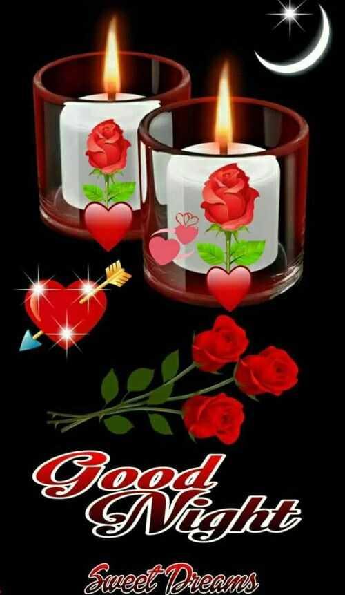 🌹🌹 good night 🌹🌹 - Good Night Sweet Dreams - ShareChat