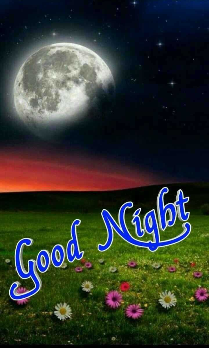 🌑 good night🌑 - Good Night - ShareChat
