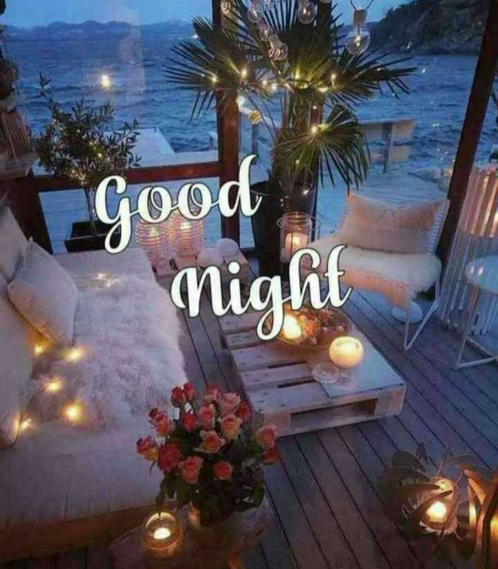 good night 😴 - Good Night - ShareChat
