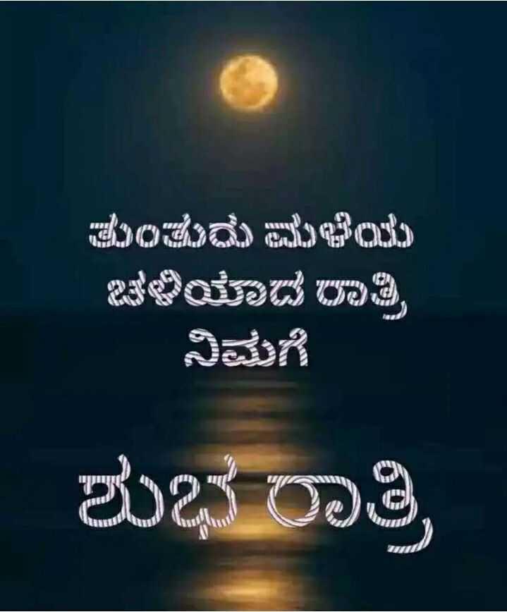 😴good night 😴 - ತುಂತುರು ಮಳೆಯ ಇತಳಿಯಾದ Tಾತ್ರಿ ನಿಮಗೆ ಆyy 11 ಶುಭ ರಾತ್ರಿ I - ShareChat