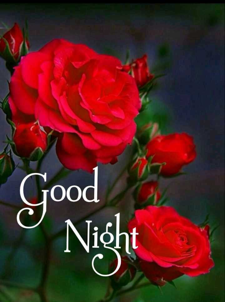 good night - jood - ShareChat