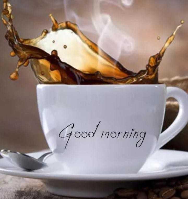 good night&good morning - Good morning - ShareChat