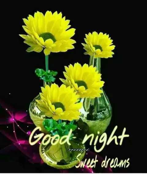 Good Night Beautiful Flowers Pic - Flowers Healthy