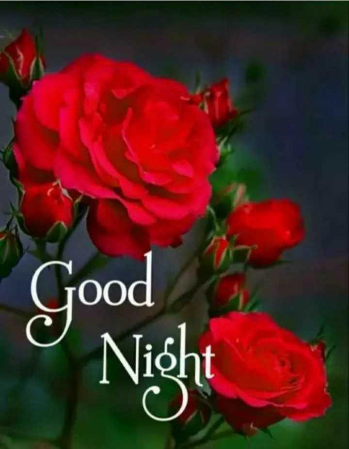 goof night - Good Night - ShareChat