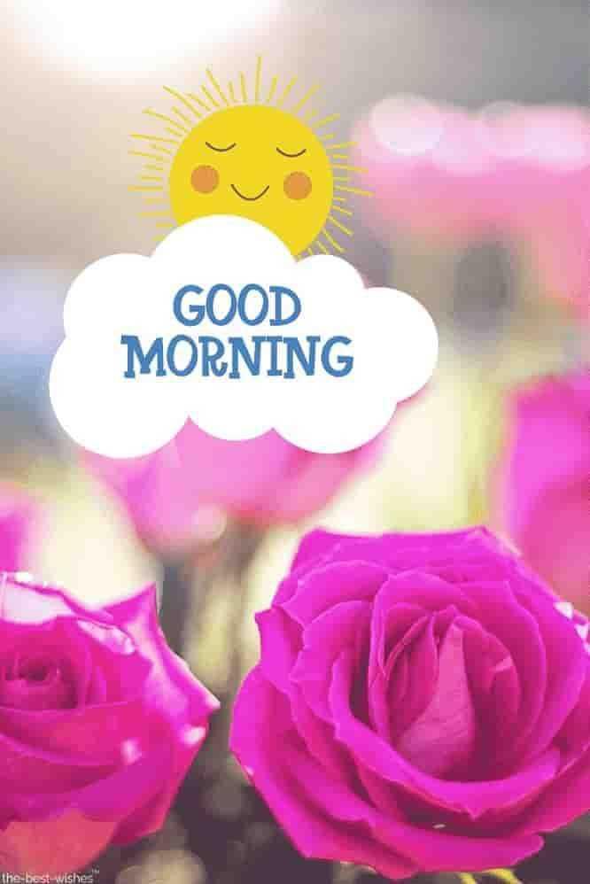 gud morning all - GOOD MORNING - ShareChat