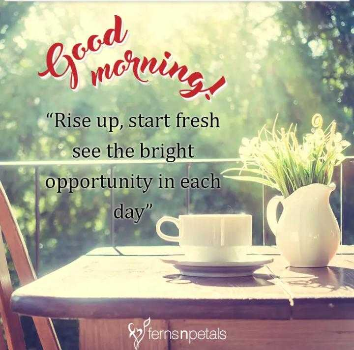 """gud mrng 💞💞💞 - Good bo morning , """" Rise up , start fresh 1 . see the bright opportunity in each day W fernsnpetals - ShareChat"""