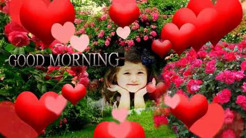 gud mrng 💞💞💞 - GOOD MORNING - ShareChat