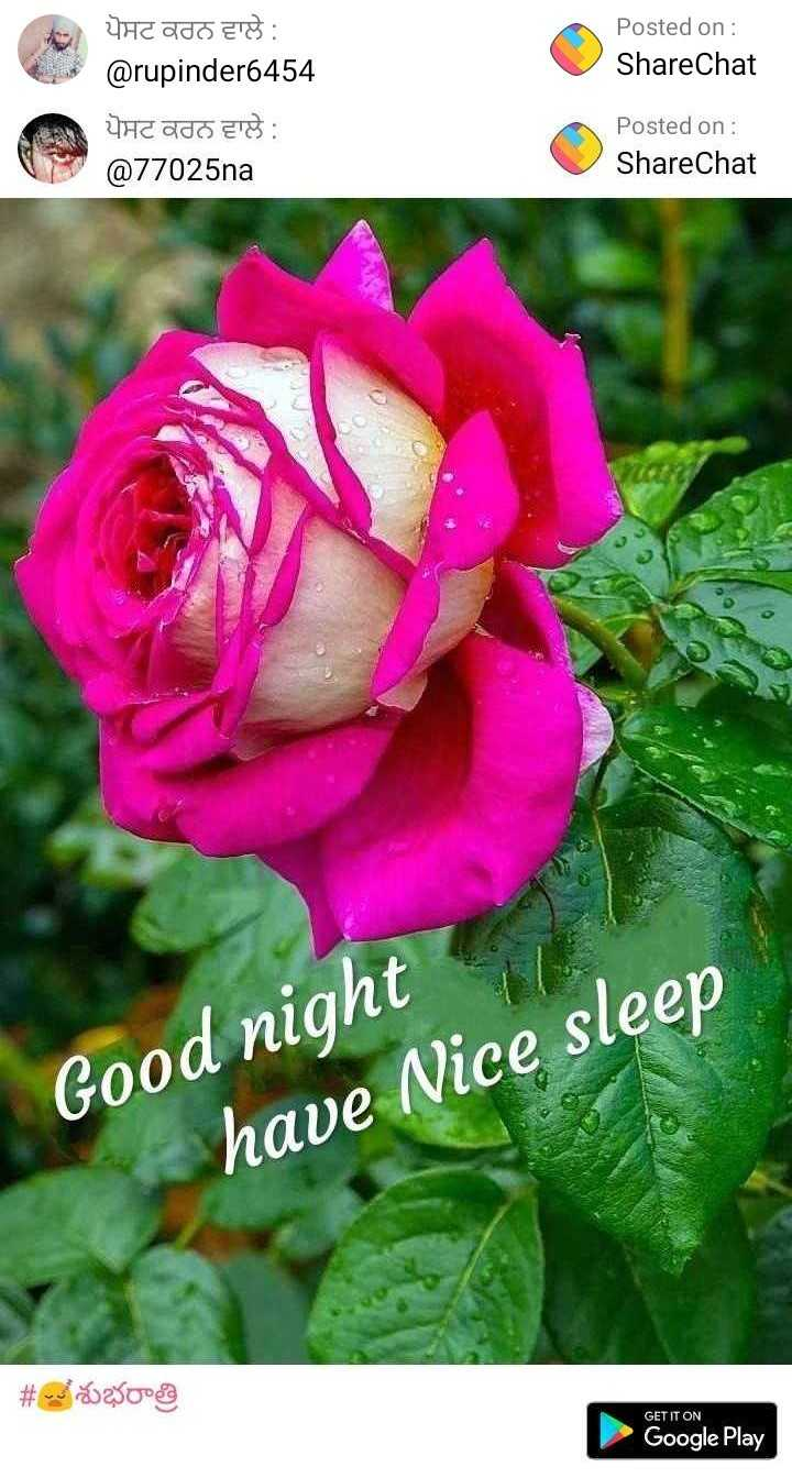 😇😇😇gud night Images Official _Rocky_0000 - ShareChat
