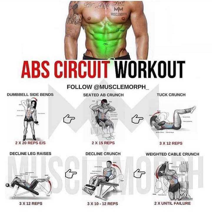 gym lovers - MUSCLEMORPH ABS CIRCUIT WORKOUT FOLLOW @ MUSCLEMORPH _ SEATED AB CRUNCH DUMBBELL SIDE BENDS TUCK CRUNCH 2 x 20 REPS EIS 2 X 15 REPS 3 X 12 REPS DECLINE LEG RAISES DECLINE CRUNCH WEIGHTED CABLE CRUNCH 3 X 12 REPS 3 X 10 - 12 REPS 2 X UNTIL FAILURE - ShareChat