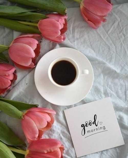 hai😎😎 - qдеа morning - ShareChat