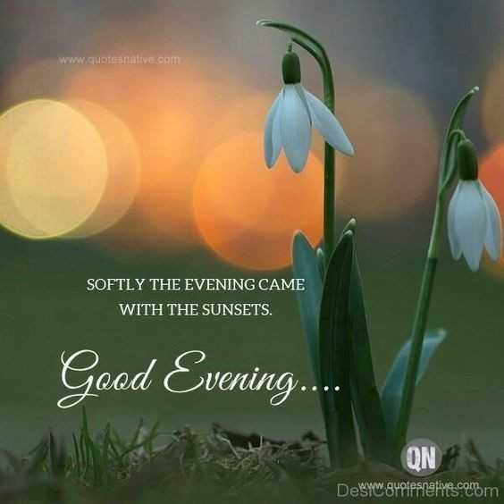 hai😎😎 - www . quotesnative . com SOFTLY THE EVENING CAME WITH THE SUNSETS . Good Evening . . . Desww . gyotesnative . comm - ShareChat