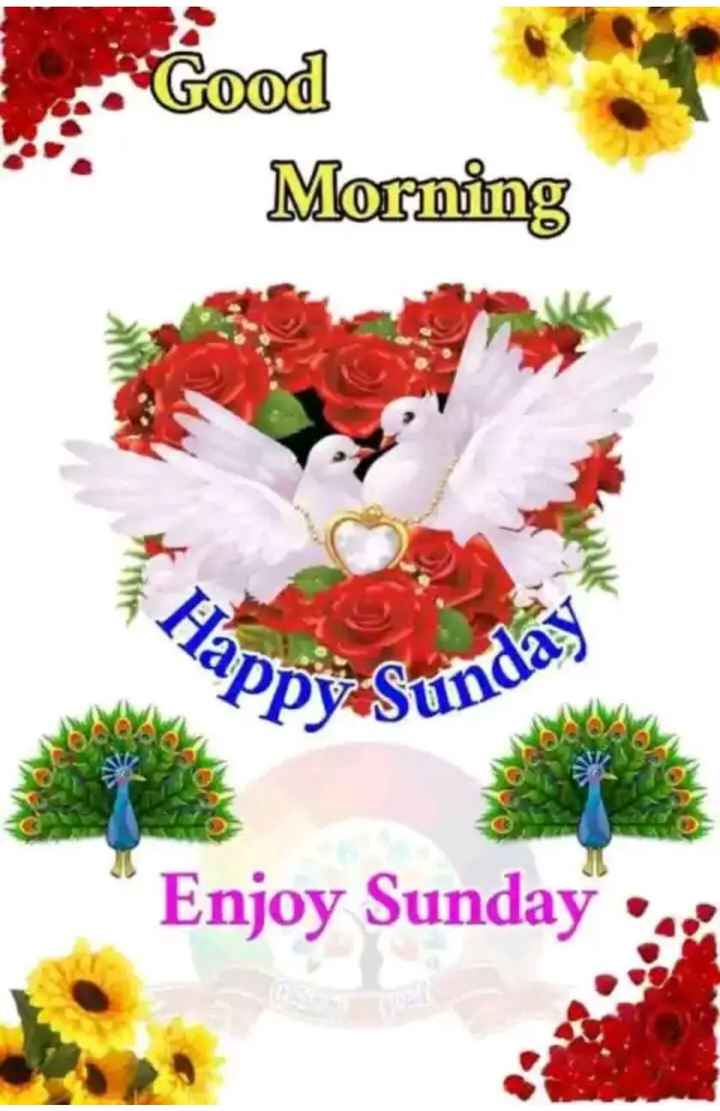 happy Sunday - Good Morning Hapy Enjoy Sunday : - ShareChat
