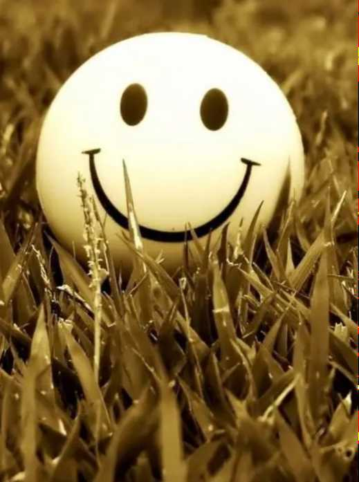 happy be happy - ShareChat