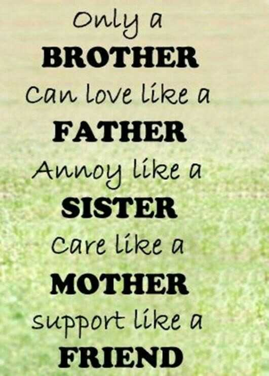 happy brothers day - only a BROTHER can love like a FATHER Annoy like a SISTER care like a MOTHER support like a FRIEND - ShareChat