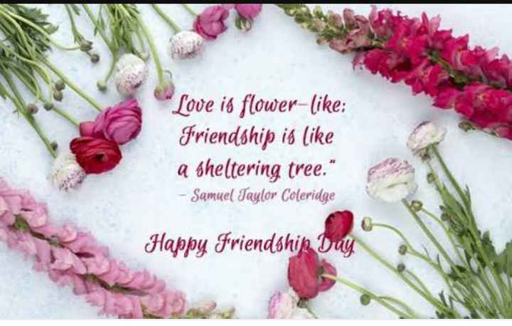 happy friendship day 😘😘😍😍😘😍😘😍 - Love is flower - like : friendship is like a sheltering tree . - Samuel Taylor Coleridge Happy Friendshin Day - ShareChat