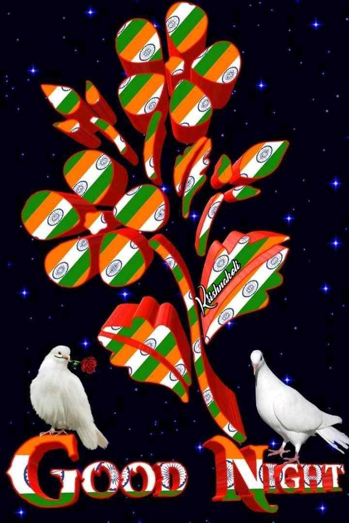 🇮🇳🇮🇳🇮🇳happy independence day🇮🇳🇮🇳🇮🇳 - Vishnaholt GOOD NIGHT AWA - ShareChat