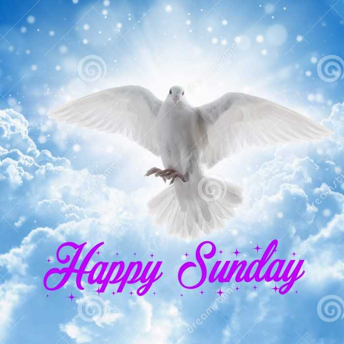 happy sunday 🍛🍜🍗🍖 - USWD10 Oenosti Happy Sundaj dreaming - ShareChat
