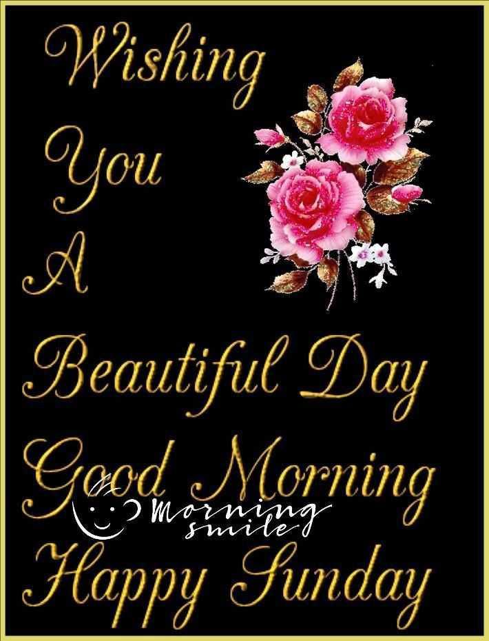 happy sunday 😊😊😊 - Wishing Oy Beautiful Day Happy Sunday - ShareChat