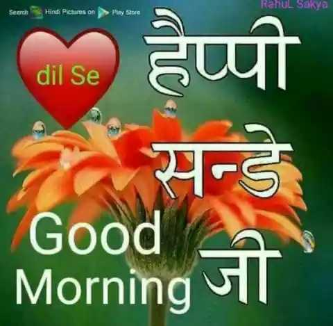 happy sunday morning 🌹 - Rahul Sakya Search Hindi Pictures on Play Store हैप्पी dil Se Good   Morning जी । - ShareChat