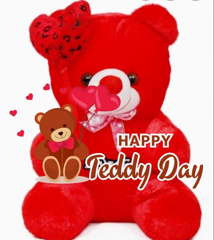 happy teddy day - HAPPY lo Pedidly Day - ShareChat