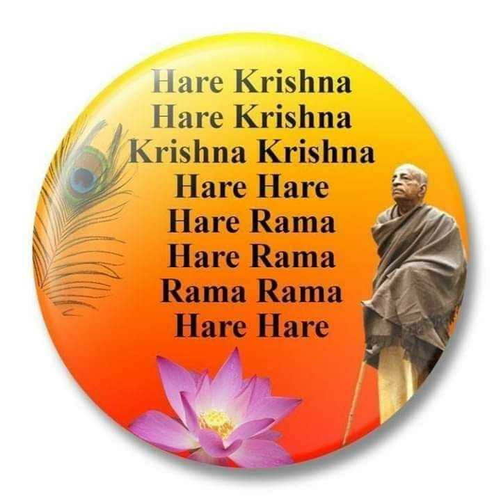 hare krishna - Hare Krishna Hare Krishna Krishna Krishna Hare Hare Hare Rama Hare Rama Rama Rama Hare Hare - ShareChat