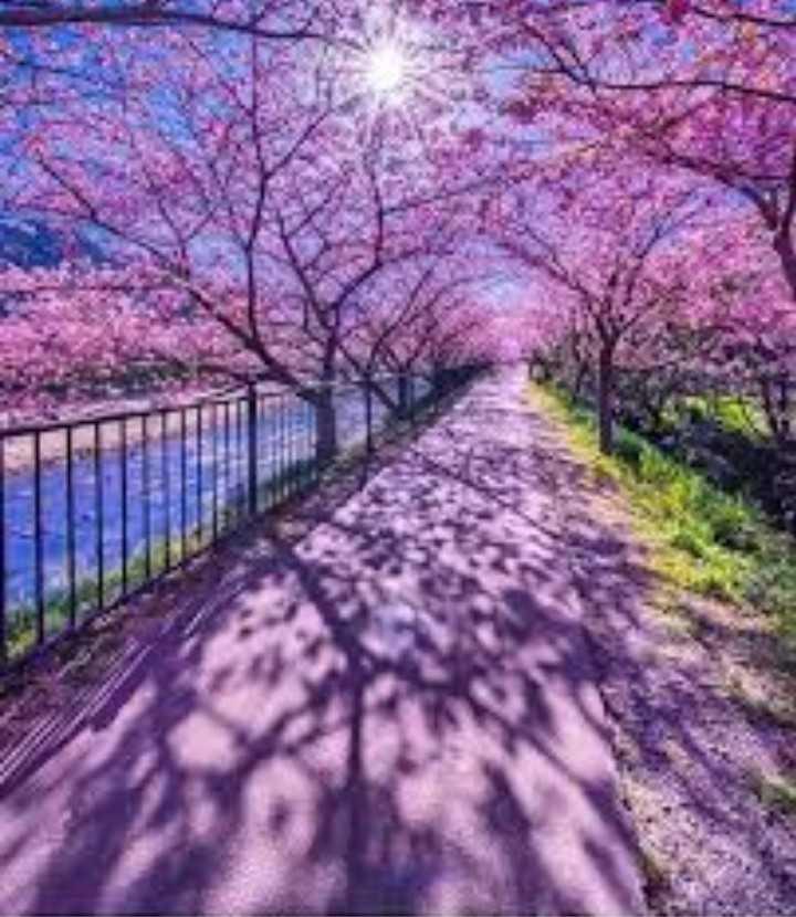 hd beautiful wallpapers - ShareChat