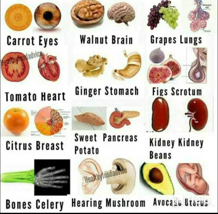 health food - Carrot Eyes Walnut Brain Grapes Lungs Ginger Stomach Figs Scrotum Sweet Pancreas Citrus Breast rus breast Potato Kidney Kidney Beans Healthyfoodadrid Bones Celery Hearing Mushroom Avocaso Uterus - ShareChat