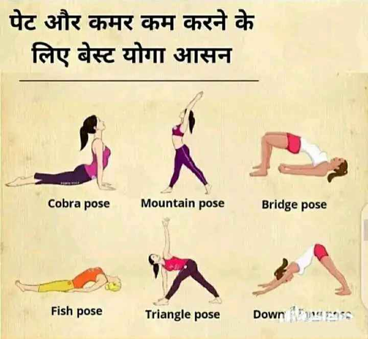 health tips - पेट और कमर कम करने के लिए बेस्ट योगा आसन Cobra pose Mountain pose Bridge pose Fish pose Triangle pose Down papers - ShareChat
