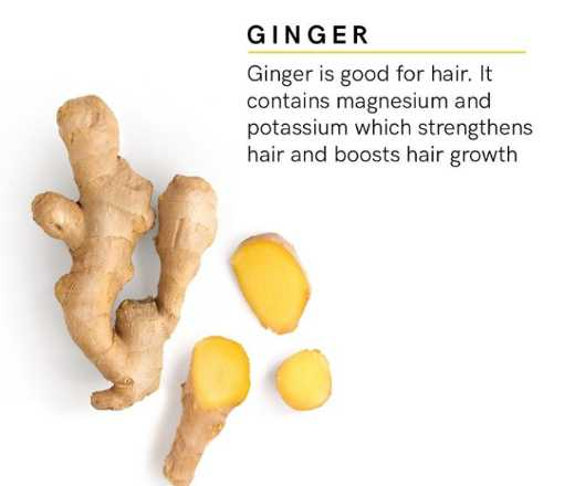 health tips - GINGER Ginger is good for hair . It contains magnesium and potassium which strengthens hair and boosts hair growth - ShareChat