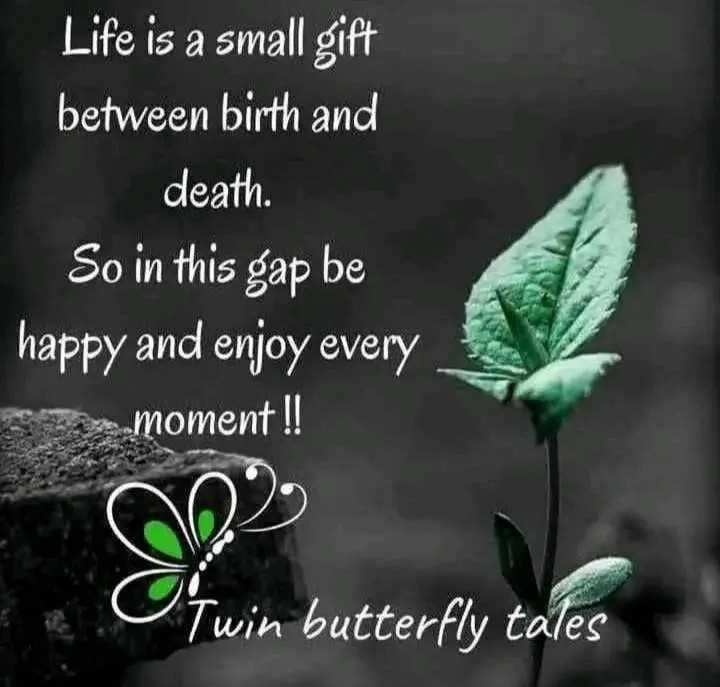 heartbeat quotes - Life is a small gift between birth and death . So in this gap be happy and enjoy every moment ! ! Twin butterfly tales - ShareChat
