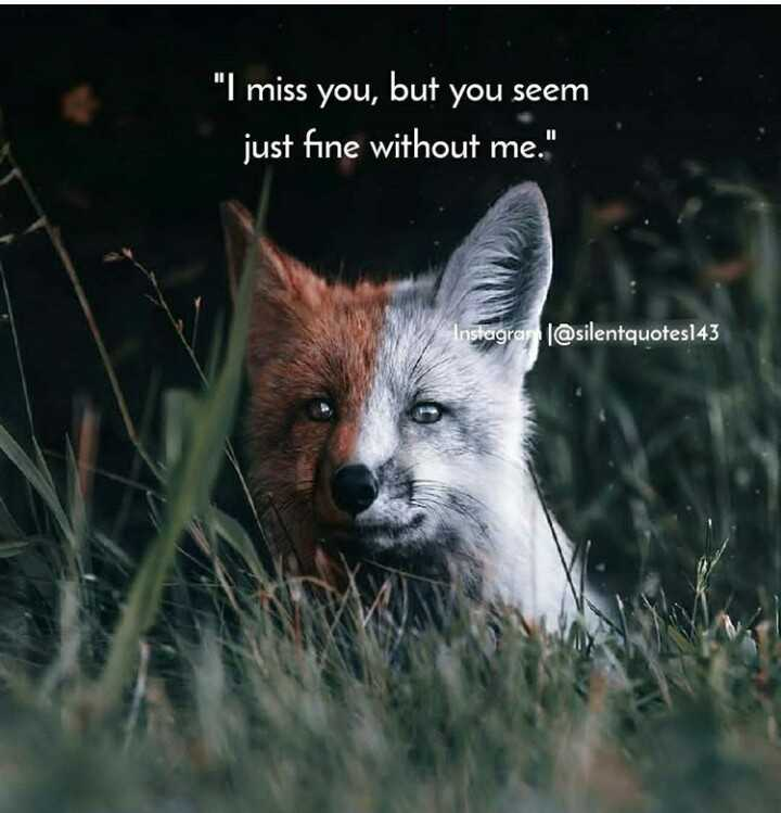 heartbreak - I miss you , but you seem just fine without me . Instagram @ silentquotes143 - ShareChat