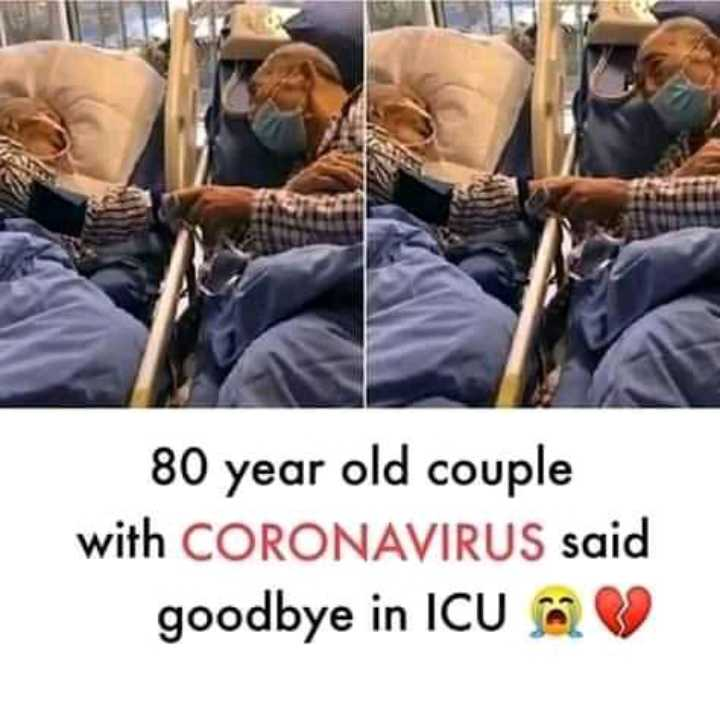 heart touching - 80 year old couple with CORONAVIRUS said goodbye in ICU - ShareChat