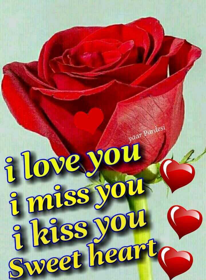hi💅👍 - yaar Pardesi i love you i miss you i kiss you Sweet heart - ShareChat