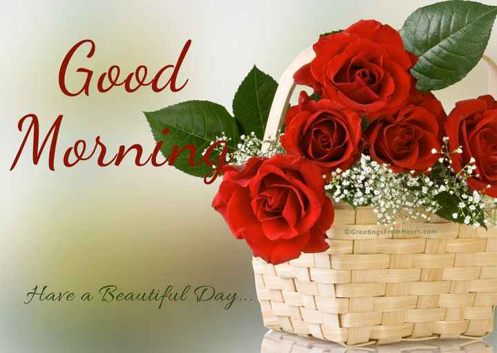 hi💅👍 - Good Morno © Greetings From Heart . com Have a Beautiful Day . . . - ShareChat