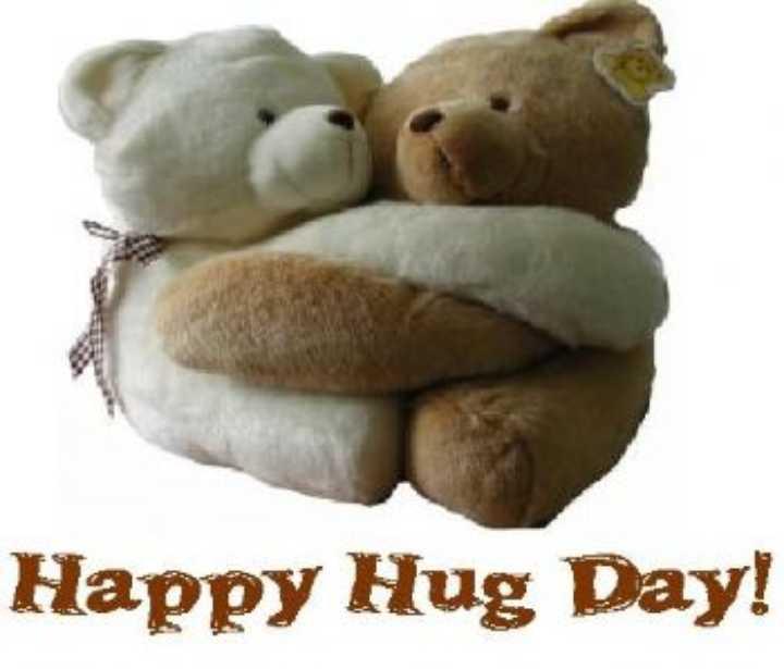 hug cute teddy special wishe's - Happy Hug Day ! - ShareChat