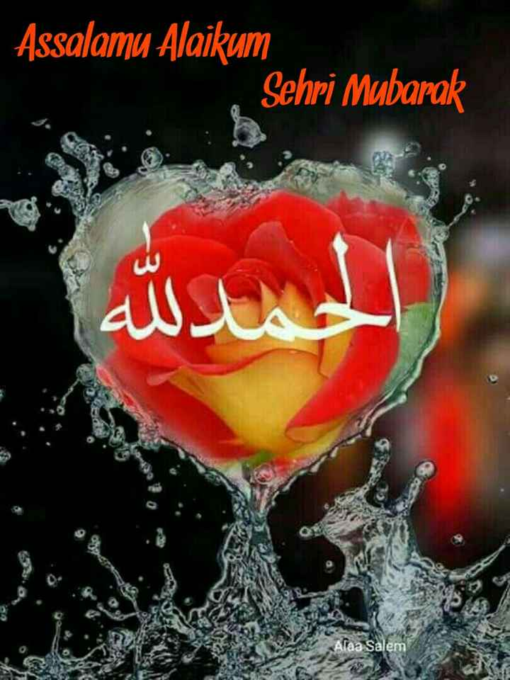 ibaadat - Assalamu Alaikum Sehri Mubarak المدلله ع ع Alaa Salem - ShareChat